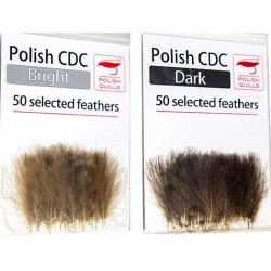 Polishquills Selected CDC 50 Plumas