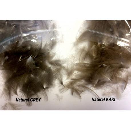 Pluma CDC Natural Seleccionada FlyCreek