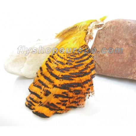 Cuello Completo de Faisan Dorado - Hareline Golden Pheasant neck