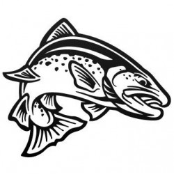 Sticker Vinilo - Trout