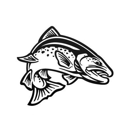 Sticker Vinilo - Trout