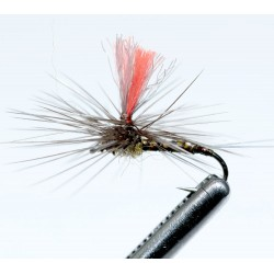 PM5 Oliva Quill Mosca Seca High Visibility